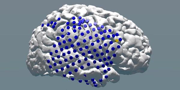 different cognitive enhancement