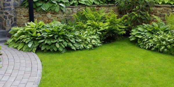 garden landscaping sarasota